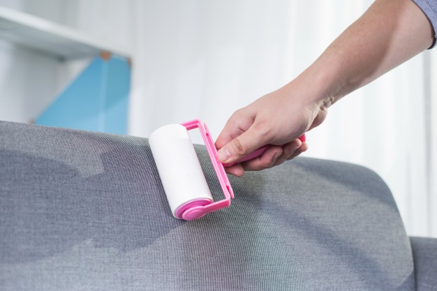 upholstery cleaning Sydnet