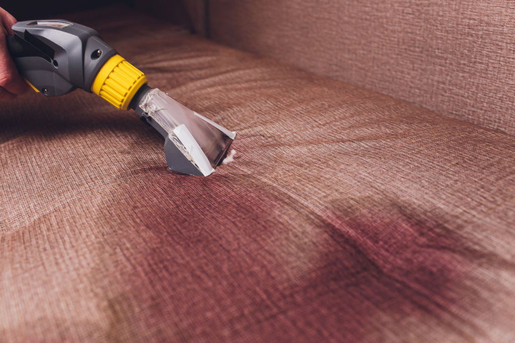Upholstery Cleaning Guide For Pet Owners